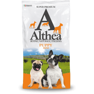 Althea Puppy Mini & Large